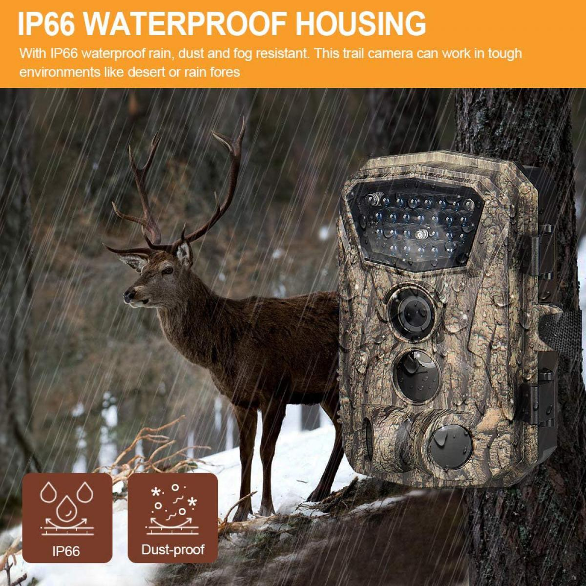"""H883 Mini Trail Camera 1080P HD Game Camera IP66 Cámara de caza de vida silvestre a prueba de agua con 12 meses de espera y visión nocturna LED IR LCD de 2.4 """""""