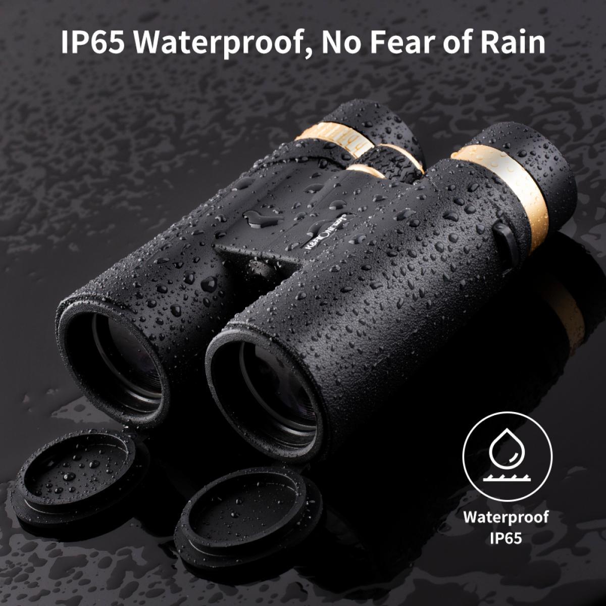 12x42 Professional HD Binoculars for Bird Watching, Clear Weak Light Night Vision Binoculars Easy Focus Waterproof