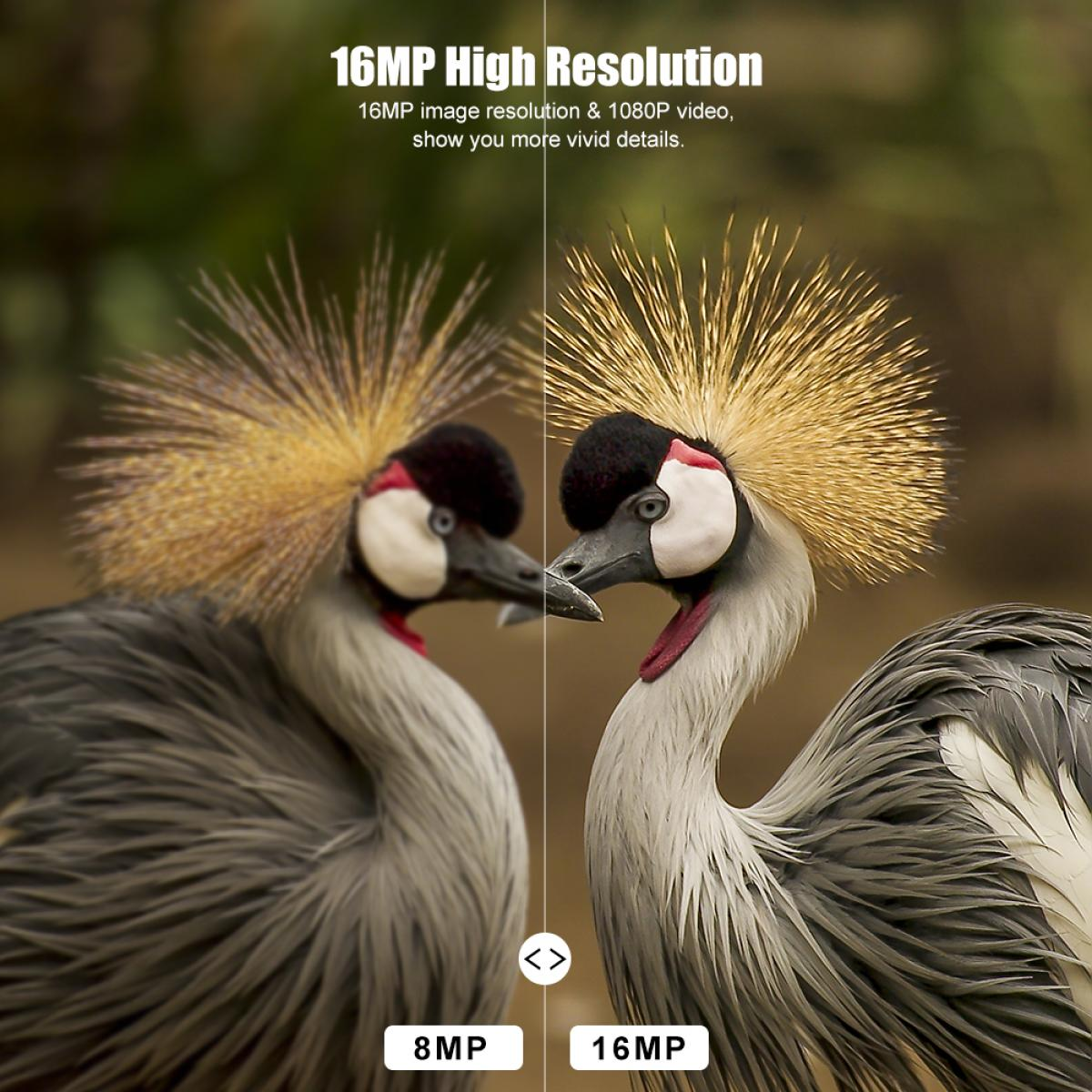 K&F JDL201 0.4 segundos HD cámara salvaje de visión nocturna por infrarrojos de caza impermeable al aire libre
